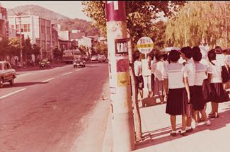 중앙 다리 버스 정류장 부근